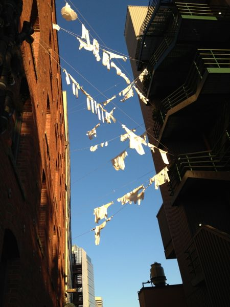 clotheslines, Seattle