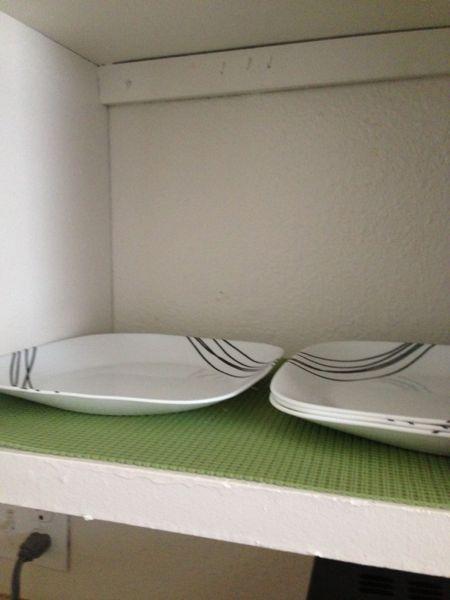 Palmer's plates